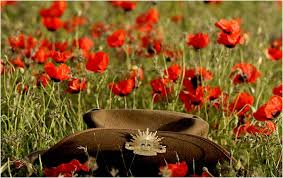 Slouch hat among poppies