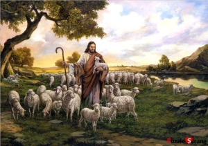 jesusmyshepherd - w flock of sheep